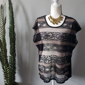Cato black and tan lace sheer striped blouse